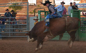Contests at El Dorado County Fair, Placerville, CA