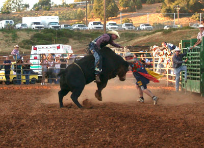 Humpz and Horns Bull Riding